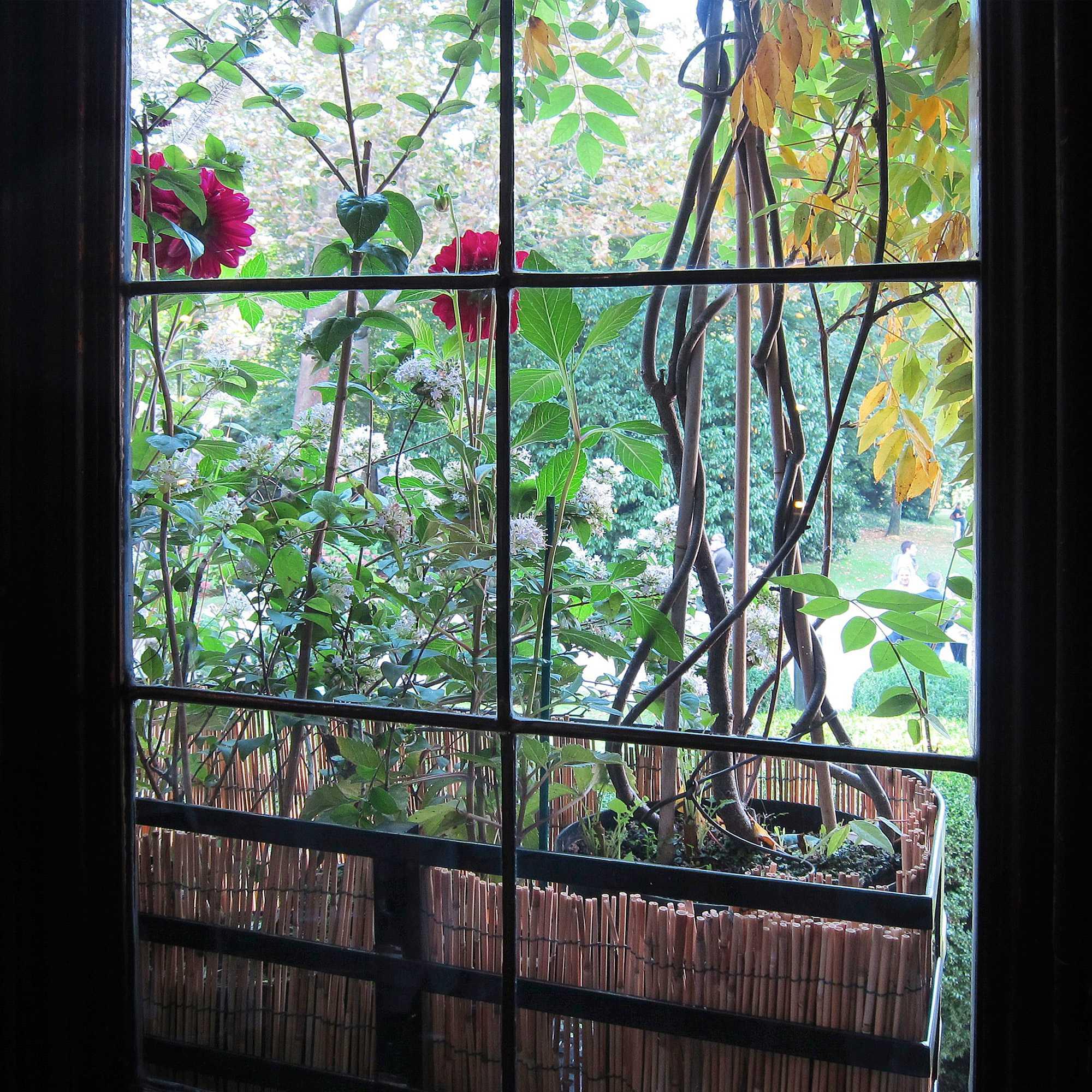 horticolario 073 le vert soi. Black Bedroom Furniture Sets. Home Design Ideas