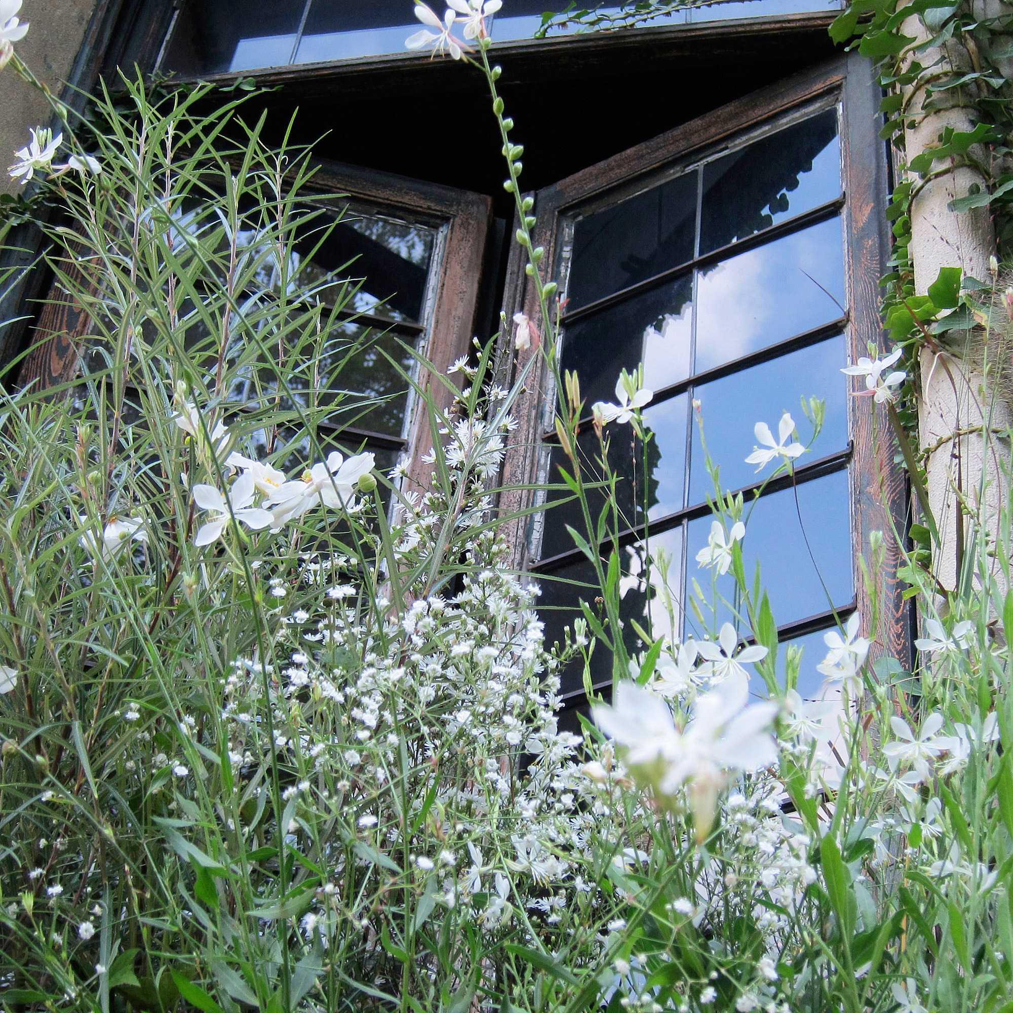 horticolario 117 le vert soi. Black Bedroom Furniture Sets. Home Design Ideas