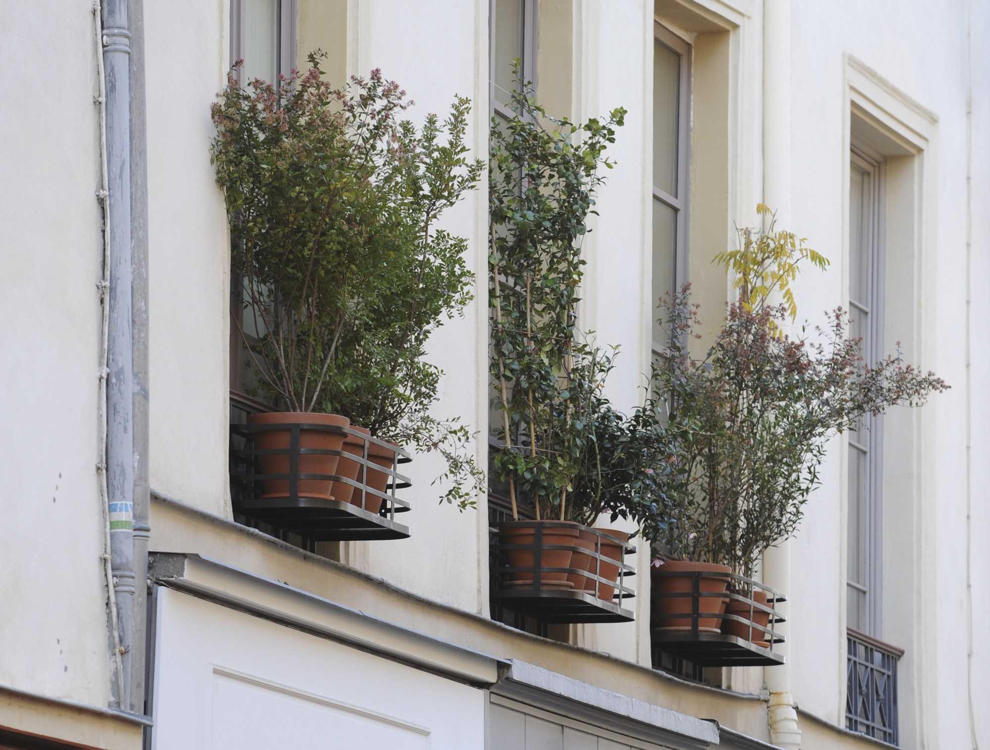 Vieille temple 008 le vert soi for Le jardin moghol 53 rue vieille du temple